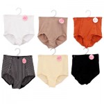 VIP Ladies Control Brief Panty - Asst