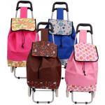 Shopping Cart with Fabric Bag - Asst  21