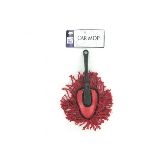 Car mop with handle